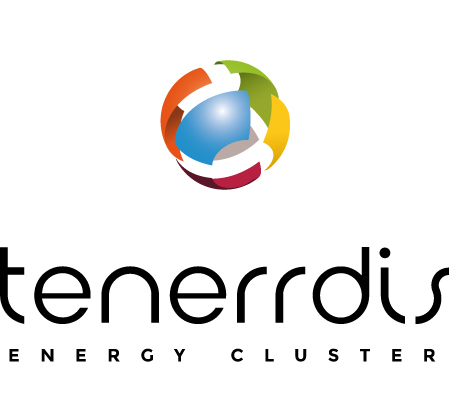 logo TENERRDIS